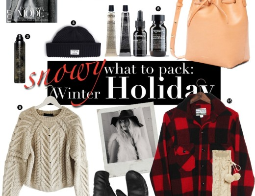 whattopack-winter-holiday-736
